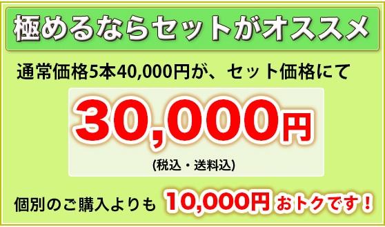 極めるならセットがオススメ 通常価格5本40,000円が、セット価格にて30,000円(税込・送料込) 個別のご購入よりも10,000円おトクです!